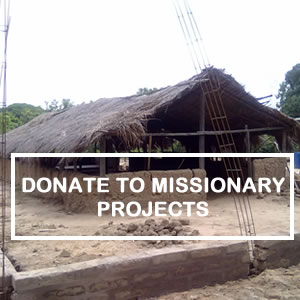 Donate to Missionary Projects